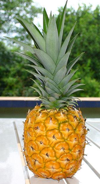Ananasų dieta
