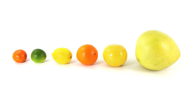 citrusiniai-vaisiai-eile