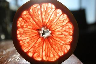 greipfruto griezinele