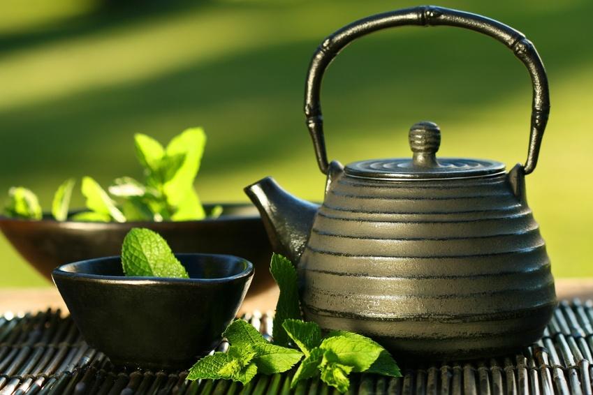 zalia arbata